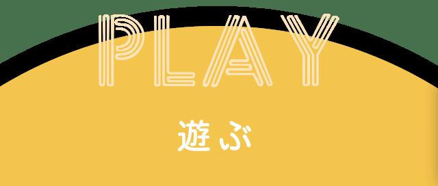 遊ぶ:こやす認定こども園